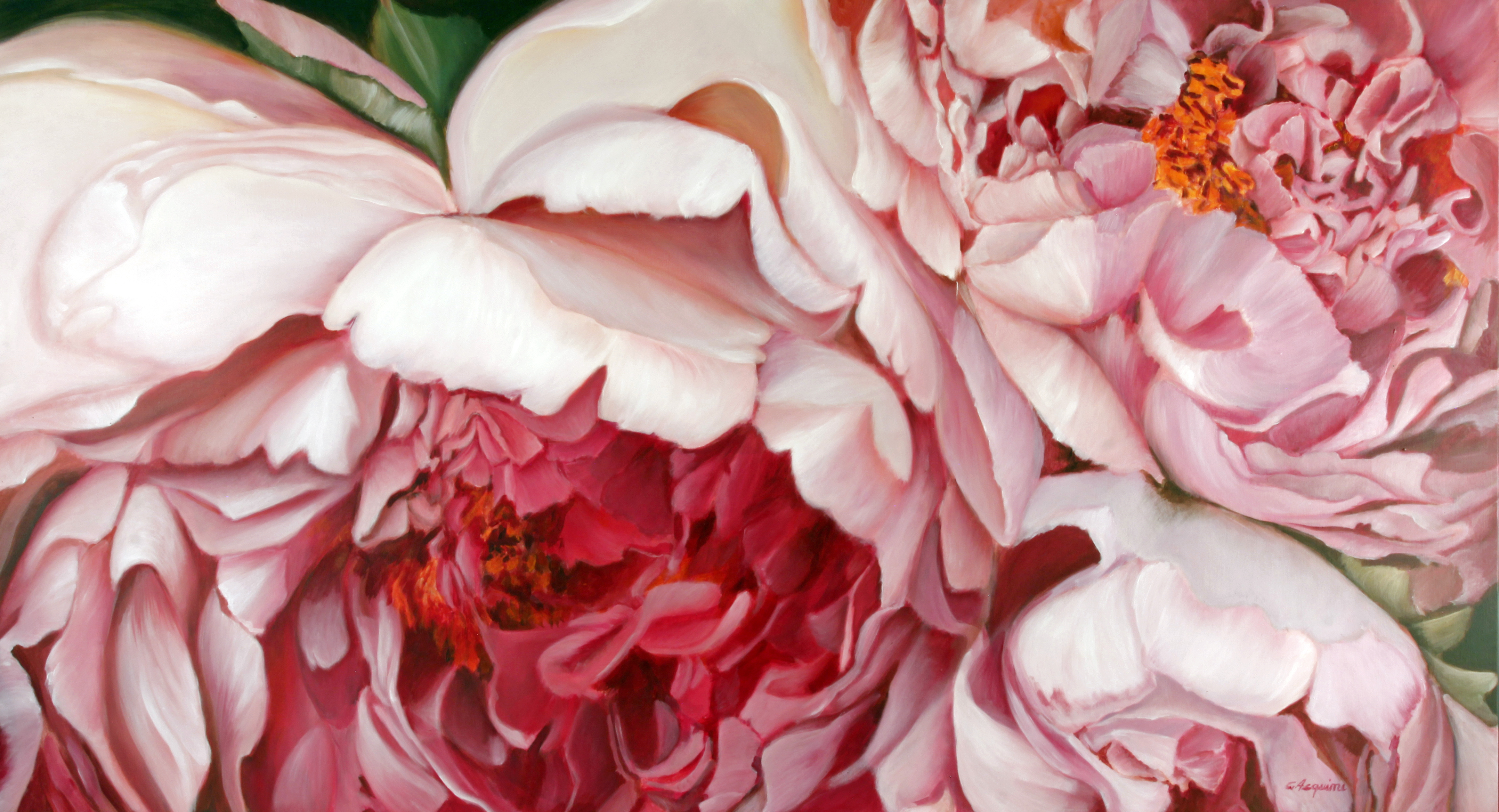 peonie pink 160 x 8o